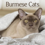 Burmese Cats Calendar 2018