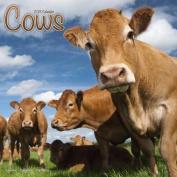 Cows Calendar 2018