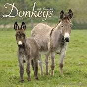 Donkeys Calendar 2018