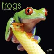 Frogs Calendar 2018