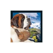 Spectacular 3D magnet - ST BERNARD DOG