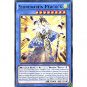 YuGiOh : RATE-EN038 1st Ed Shinobaron Peacock Rare Card -