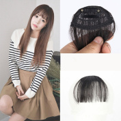 BESTLEE Fashion Air Fringe Synthetic Hair Clip in Hair Fringe Front Neat Bang without Hair Temples One Piece Straight