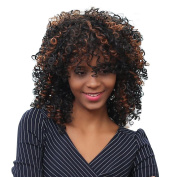Wigs, Hatop Shaggy Afro Curly Heat Resistant Synthetic Fashion Wig Hair For Women
