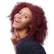 Wigs, Hatop Shaggy Afro Curly Heat Resistant Synthetic Fashion Wig Hair For Black Women