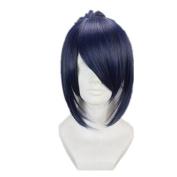 Kadiya Cosplay Wig Blue Grey Mixed Ponytail Anime Halloween Hair
