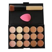Shouhengda Facial Foundation Concealer Cream Palette Powder + Brush Sponge Puff Makeup A06
