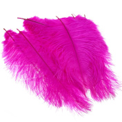 10PCS Fluffy Ostrich Feathers Arts Crafts 25cm - 30cm Long Hot Pink