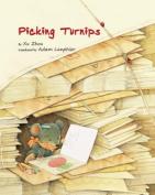 Picking Turnips