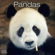 Pandas Calendar 2018