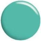 Calgel Colour Gel CGGR04S - 4g