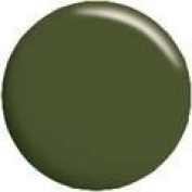 Calgel Colour Gel CGGR05S - 4g