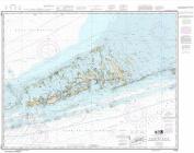 Synthetic Media NOAA Chart 11442