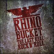 The Last Real Rock 'n' Roll [Digipak] *