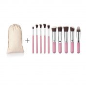 SMTSMT 2017 Super Soft 10PCS Cosmetic Makeup Brush