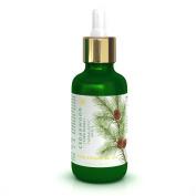 Cedarwood Essential Oil Organic 1.69 oz/ 50 ml