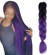 JIAMEISI Two Tone Ombre Jumbo Braid Hair Extension 5Pcs/Lot 100g/pc Kanekalon Fibre for Twist Braiding Hair