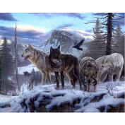 WinnerEco Wolf Pack 5D Diamond DIY Painting Embroidery Paint Cross Stitch Craft Home Decor