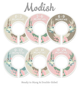 Modish Labels Baby Nursery Closet Dividers, Closet Organisers, Nursery Decor, Baby Girl, Deer, Floral Antlers, Flowers, Woodland