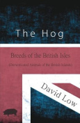 The Hog - Breeds of the British Isles