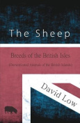 The Sheep - Breeds of the British Isles