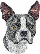 Boston Terrier, Embroidery, patch with the image of a dog