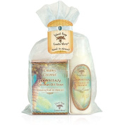 Island Soap & Candle Works Soap/Lotion Organza Gift Bags, Coconut