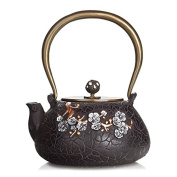 Japanese Cast Iron Pot Proud Of Mei Painted Gold Handmade Uncoated Copper Cover Boiled Tea 1.1L