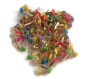 Mini Tropical Coloured Brads - 100ct - Rounds
