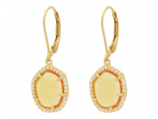 Fronay Collection Silver Gold Plated Citrine CZ Slice Around Leaverback Earrings
