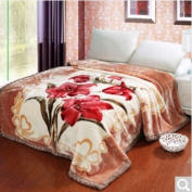 BDUK Winter Thick Double Blanket Double Ultra Soft Intensify Thick Raschel Blanket Thick Blanket ,L,200*240Cm