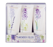 Heathcote & Ivory Lavender Fields Hand and Nail Cream Collection, 30 ml,Pack of 3