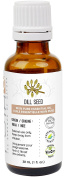 Dill Seed Essential Oil 30 ml (1 fl. Oz.) - GCMS Tested, 100% Pure, Undiluted and Therapeutic Grade