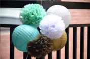 Fascola Set of 6 Promotion Pom Poms Paper Lantern Sets Tissue PaperFlower Balls Wedding Decoration Crafts Party Home Festive Events Supplies