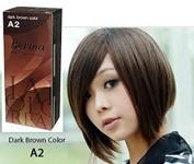 Pack of 1 Box Berina Dark Brown Hair Dye A2 Hair Colour Cream Dye Dark Brown 60 G. Super Permanent Fashion Unisex