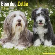 Bearded Collie Calendar 2018