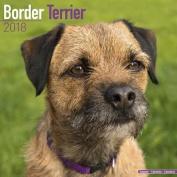 Border Terrier Calendar 2018