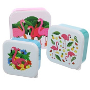 Set Of 3 Lunch Boxes - Flamingo Design by Puckator