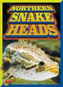 Northern Snake Heads
