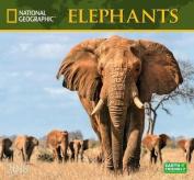 National Geographic Elephants 2018 Wall Calendar