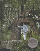 Art of Chinese Kung Fu