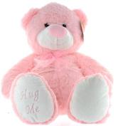 41cm Pink Jenny Baby Girl Teddy Bear Soft Toy Plush Wearing Sheer Pink Ribbon