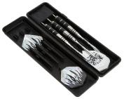 Taloyer Steel Tip Darts Tungsten Barrel Aluminium Dart Shaft Professional Set & Case