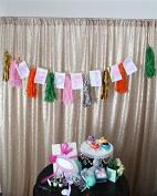 TRLYC Matt Champagne 2.4m x 2.4m Sequin Wedding Backdrop Sequin Curtain