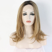Ebingoo Handmade Synthetic Lace Front Wig Blonde Straight Ombre Heat Resistant Fibre Hair (41cm ) by Ebingoo