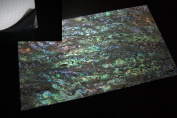 Dragon Paua Shell Enhanced Adhesive Veneer