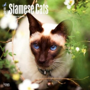 2018 Siamese Cats Wall Calendar
