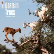 2018 Goats in Trees Wall Calendar