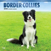 2018 Border Collies Wall Calendar