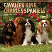 2018 Cavalier King Charles Spaniels Wall Calendar